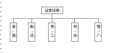 淘宝干货:网店运营结构图和工作分配