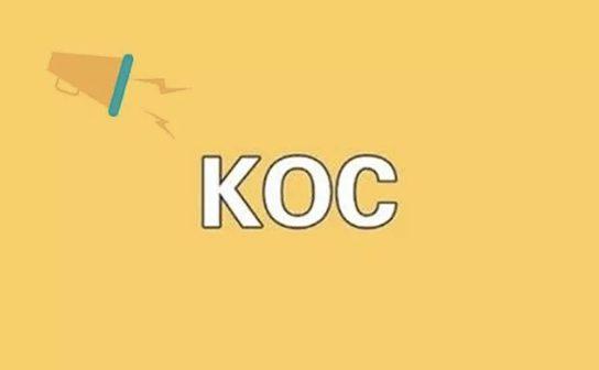 a521 李佳琦爆红的背后:KOC当兴,私域流量崛起