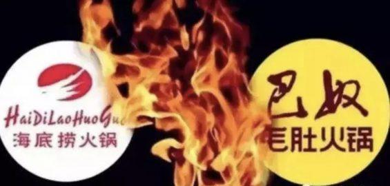 a431 奈雪的茶赵林:不怕被模仿,因为我也没办法再打造一个奈雪!
