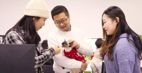 1514 新猫粮团队如何用6万私域好友,做到GMV增速超300%?