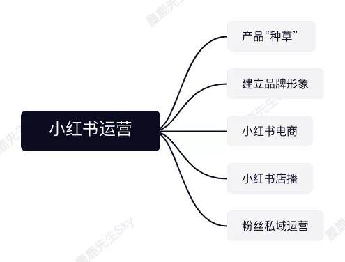 413 小红书运营团队组织架构设计方案